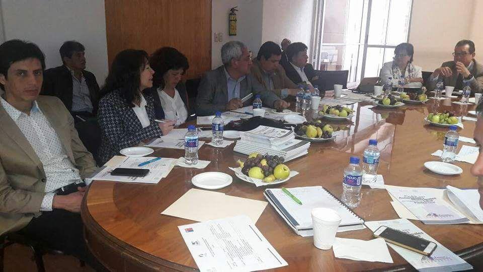 Alcaldesa finaliza exitosa pasantía internacional sobre Municipios saludables