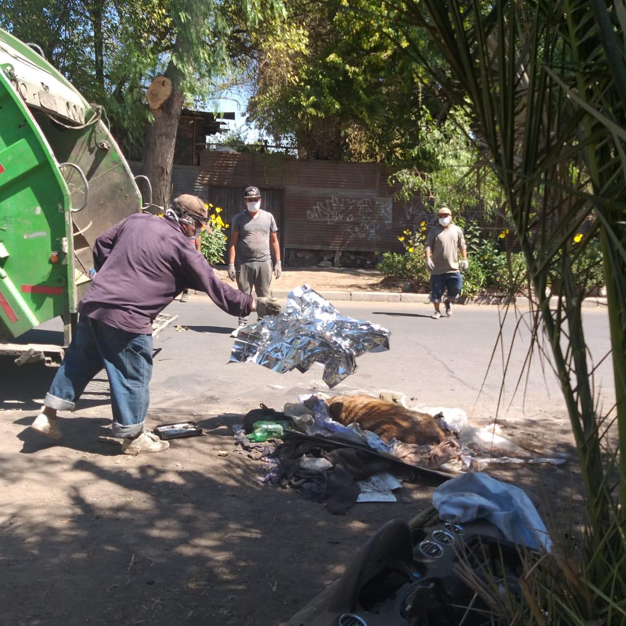 Descartan matanza de perros en la comuna