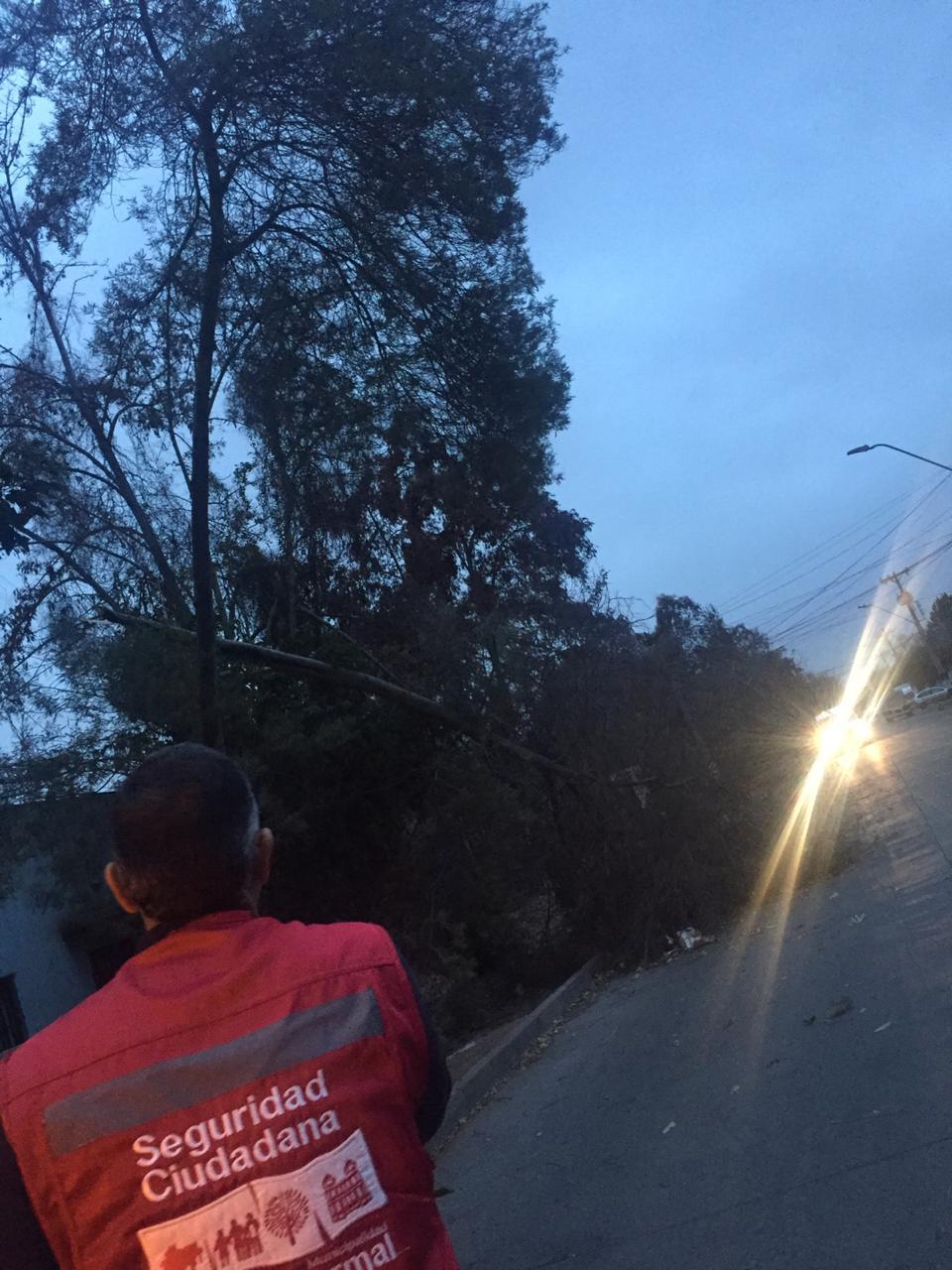 Municipio despliega Red de Emergencia para enfrentar daños del sistema frontal