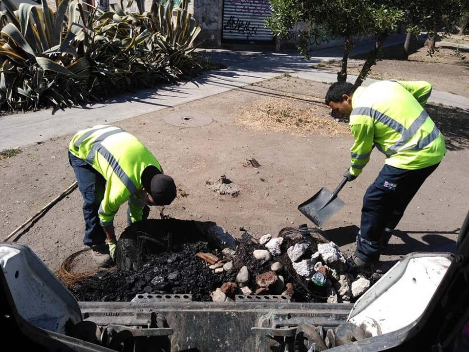Municipio redobla esfuerzos para despejar calles de la comuna